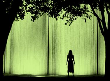 Green Translucent Wall